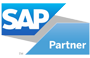 Leaping Frog Consulting - SAP Partner